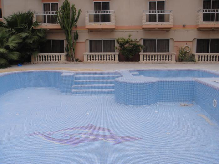pool with dolphin mosaic