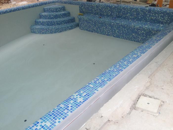 pool with mosaic steps and border